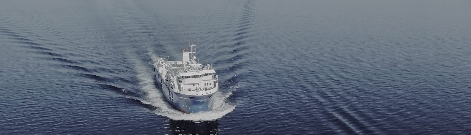 image of the vessel Artic Fjord