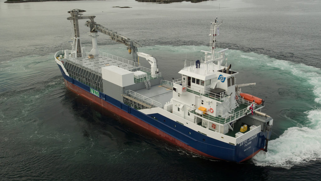Image of the vessel Artic Junior